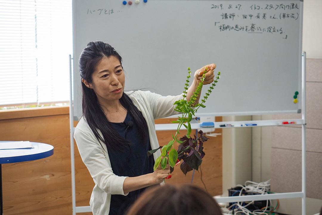 植物の恵みを暮らしに役立てる